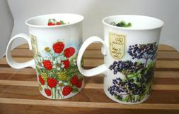Dunoon Bone China Mugs, TWO Hedgerow Fruits Series by Jane F