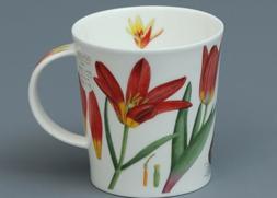 DUNOON WILD TULIPS Fine Bone China LOMOND Mug #1A