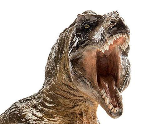 dinosaur t rex tyrannosaurus