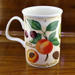 New Royal Kirkham Parchment Fruit Bone China Coffee Mug ~ Ma